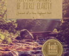 Fleeting Moments of Fierce Clarity | New Edition!