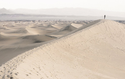 Upon the Desert Wind | A Poem