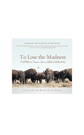 To Lose the Madness CD