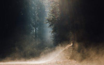 Divine Dust | A Poem