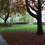 Yale_LMB_header