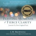 fleeting_audio_cov_sm