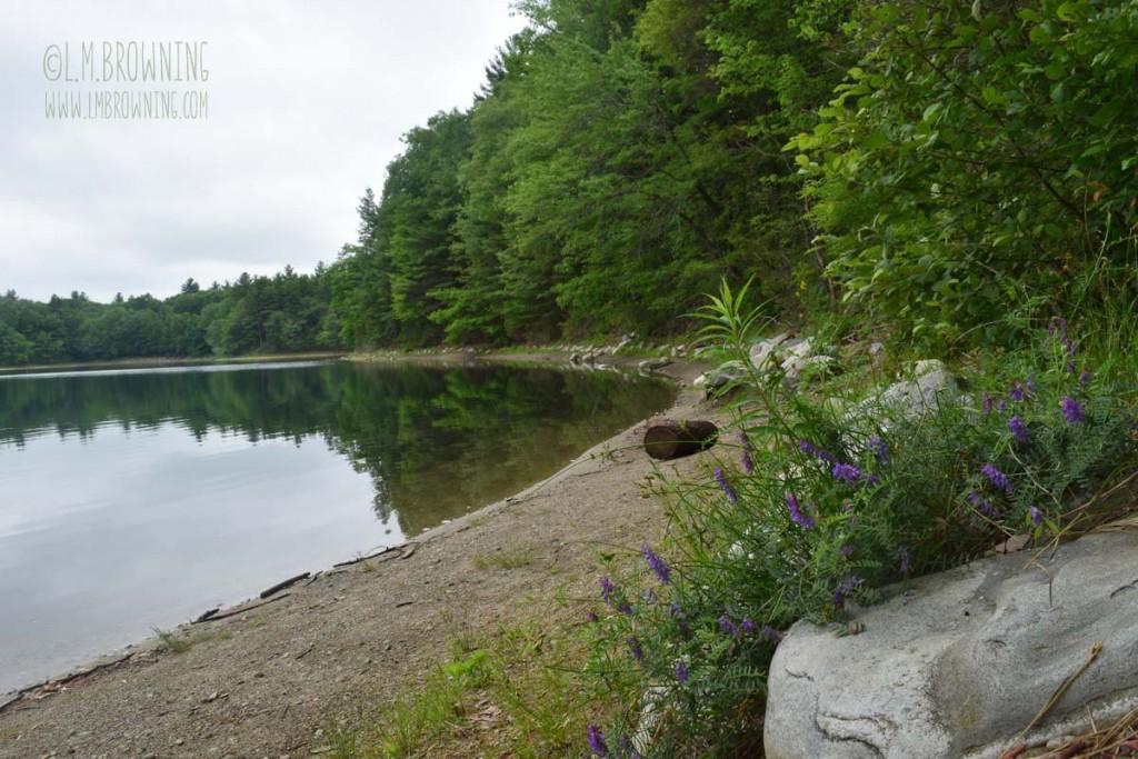 Walden Pond_June_2015