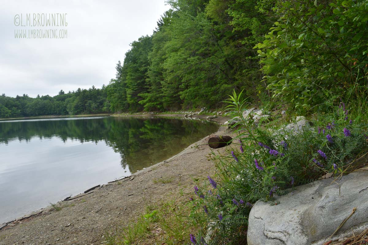 Walden Pond, Concord, MA | June 16, 2015